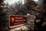 A sign on the edge of Yosemite National Park, California, is surrounded by a burn from the RimFire.