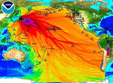 The ocean radiation plume from the 2011 disaster is expected to reach the U.S. coast by 2014 (directly at San Francisco), according to a model. (Source: adrift.au.org)