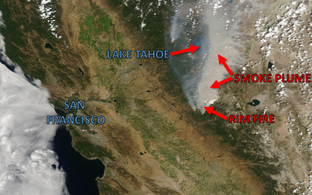 RIM FIRE LABELED